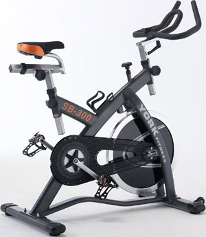 York SB300 Diamond Exercise Bike